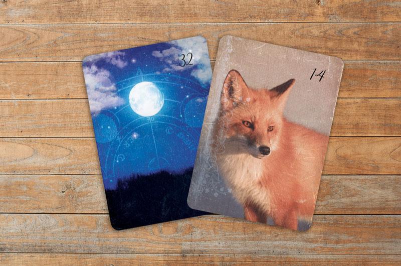Professionelle Deutung der Lenormandkarten Kombination Mond und Fuchs