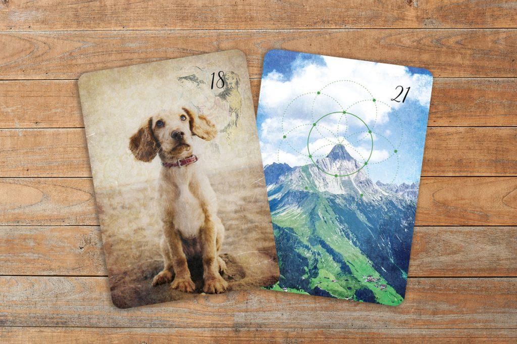 Deutung der Lenormandkarten Kombination Hund und Berg