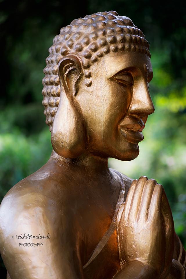 06_Bettender-Buddha