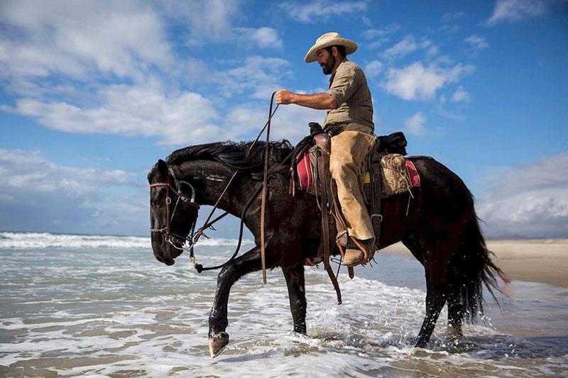 Bild zeigt Reiter mit Pferd.