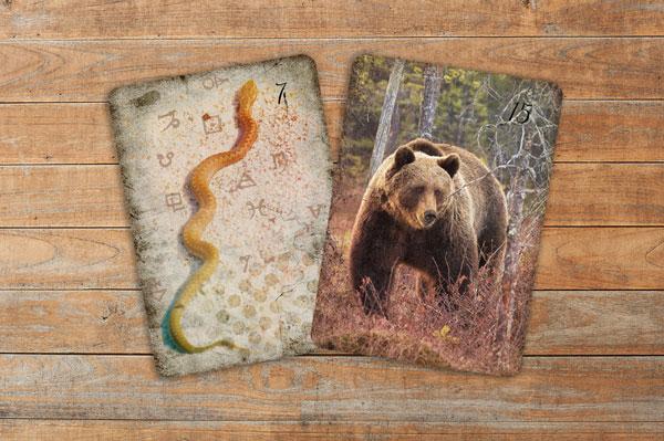 Schlange und Bär aus dem Lichtblick Lenormandkarten Deck
