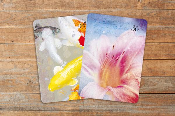 Professionelle Deutung der Lenormandkarten Kombination Lilien und Fische