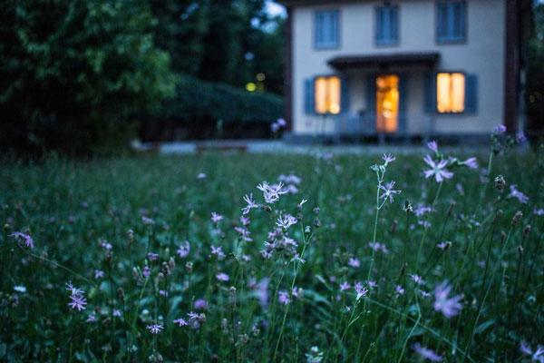 Bild zeigt Haus und Blumen in einem Garten