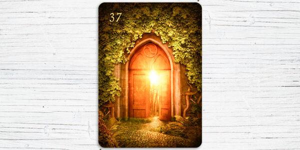 Bedeutung der Zusatzkarte 37 - das Portal